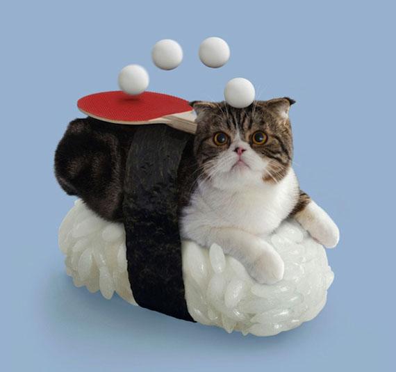 Sushi Cat Ping Pong