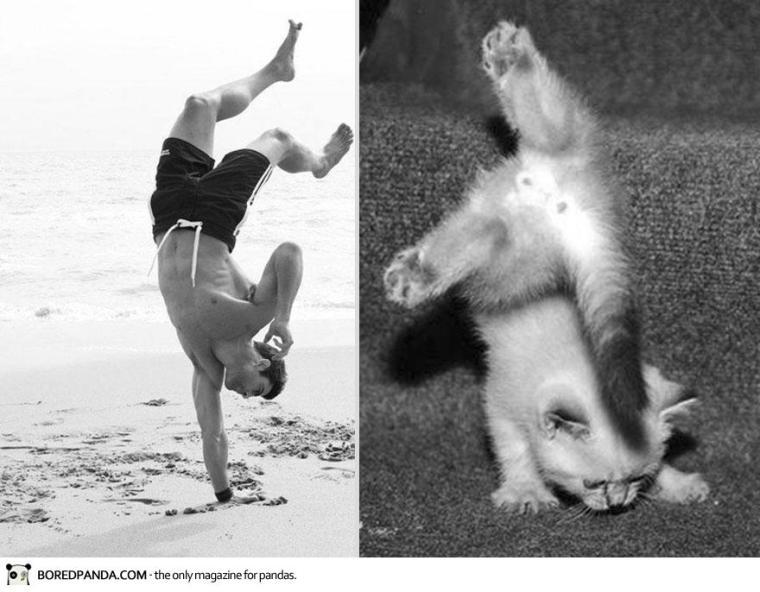 des-hommes-et-des-chatons-men-and-cats-2-31